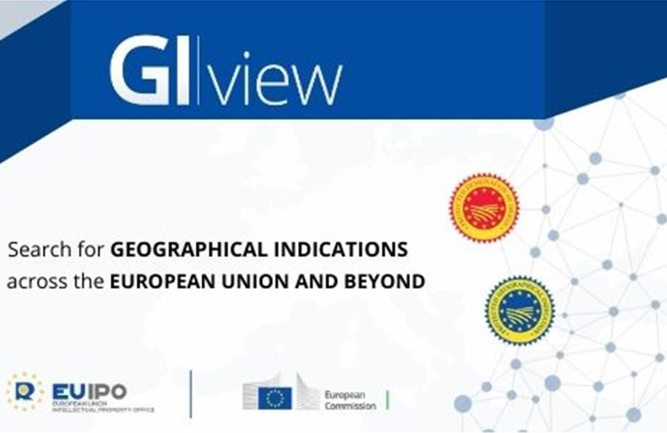 GIView_Network