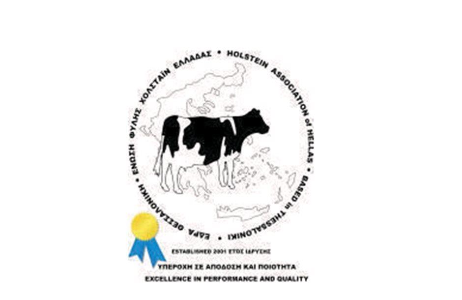 Holstein-new_2