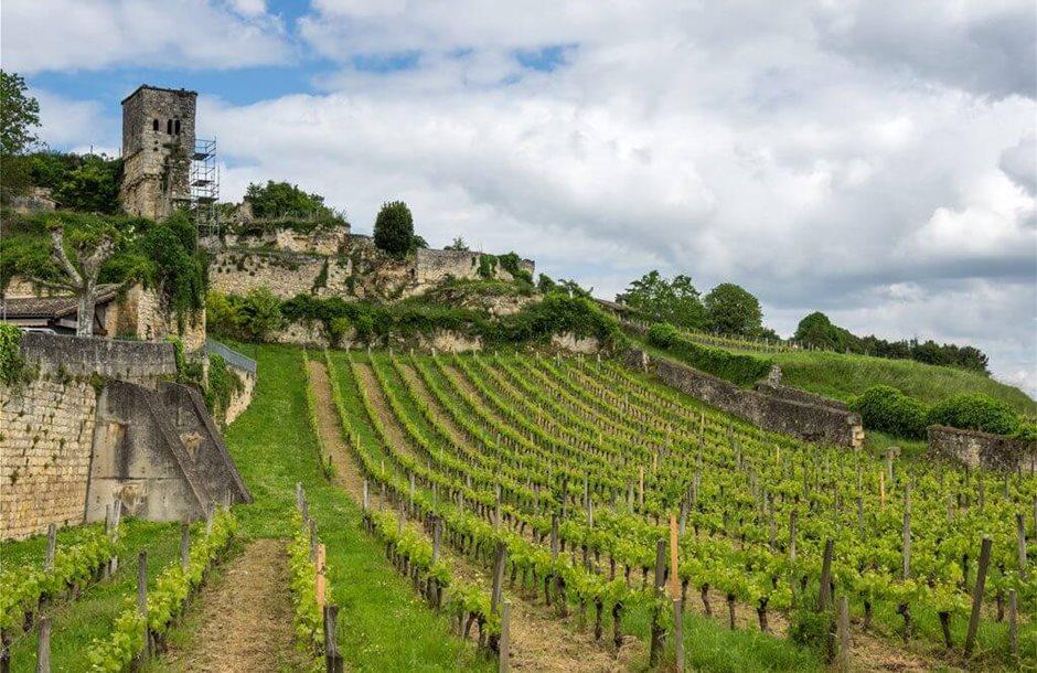 Saint-Emilion-Bordeaux-Wine-Region-1024x681