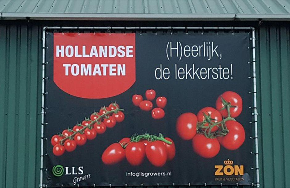 tomaten_new