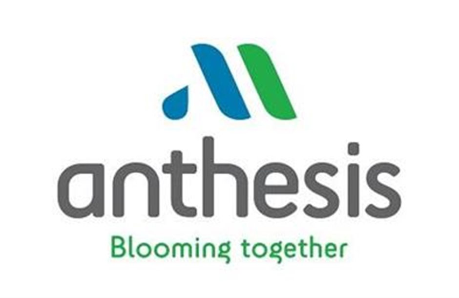 anthesis-final-logo-retina-1