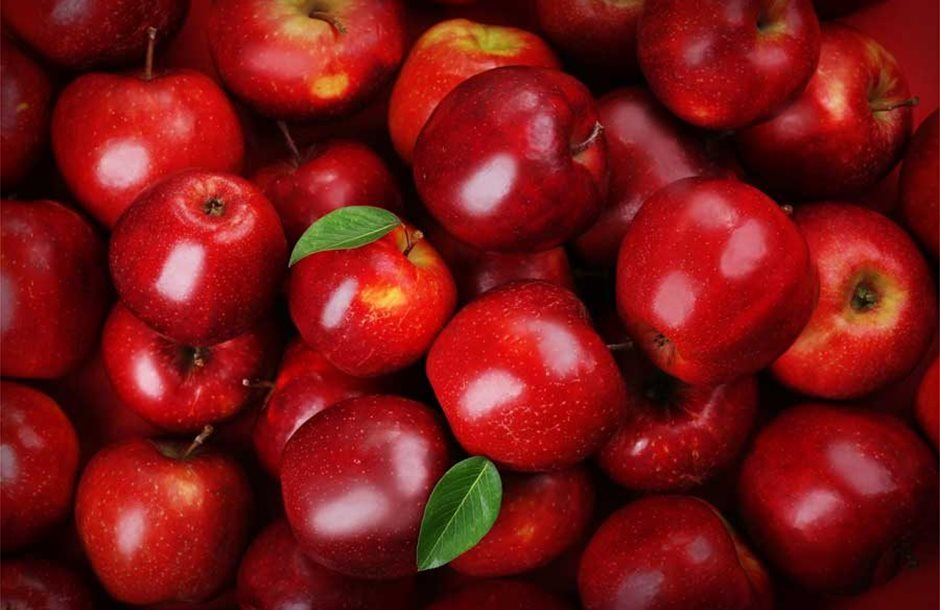 applesmanyapples