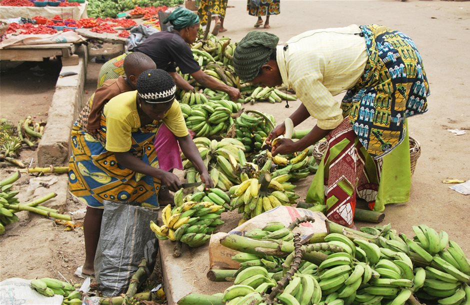 banana-cameroon