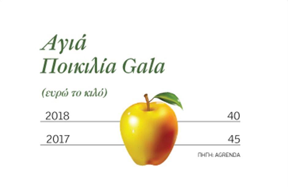 Τιµή στην εξαγωγή πιάνουν τα μήλα Gala της Αγιάς