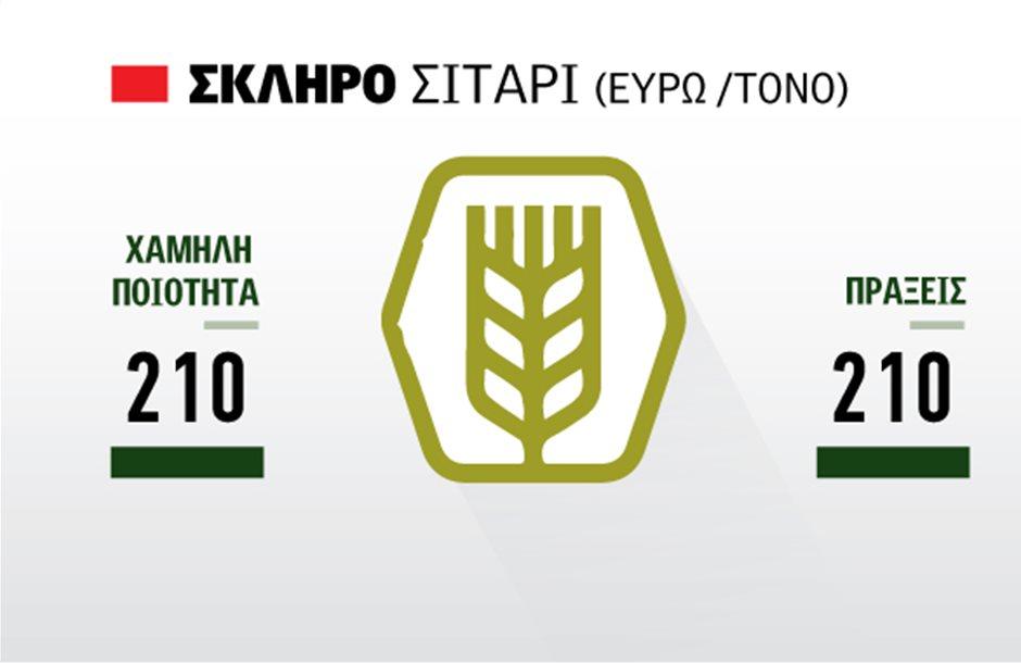 Σημάδια για βελτίωση της τιμής στο σκληρό σιτάρι μέσα στο Γενάρη