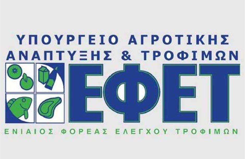 efet_13