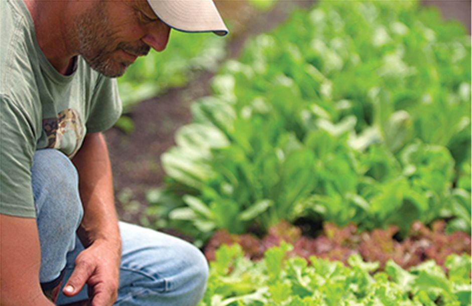 Πρώτα επαγγελματίες αγρότες με πιστοποίηση στα Βιολογικά