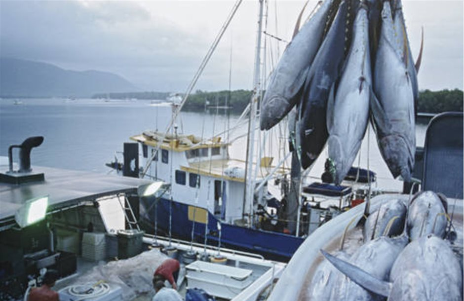 Στα «δίχτυα» του εμπορικού πολέμου το αμερικανικό ψάρι