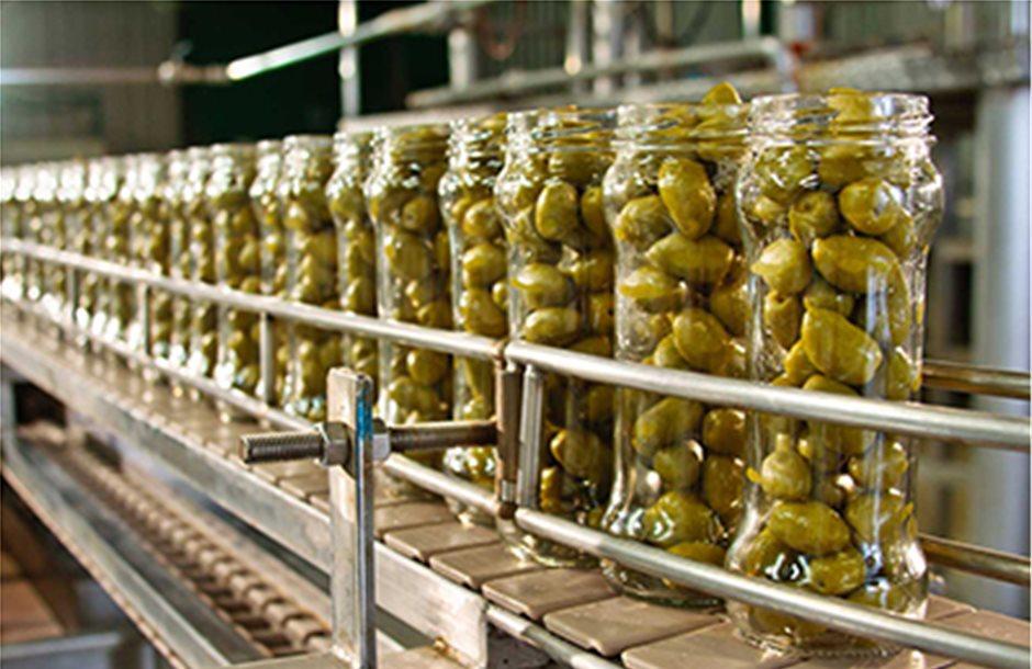 Σκαρφάλωσε στα 1,50 ευρώ η λειψή φέτος πράσινη ελιά της Χαλκιδικής