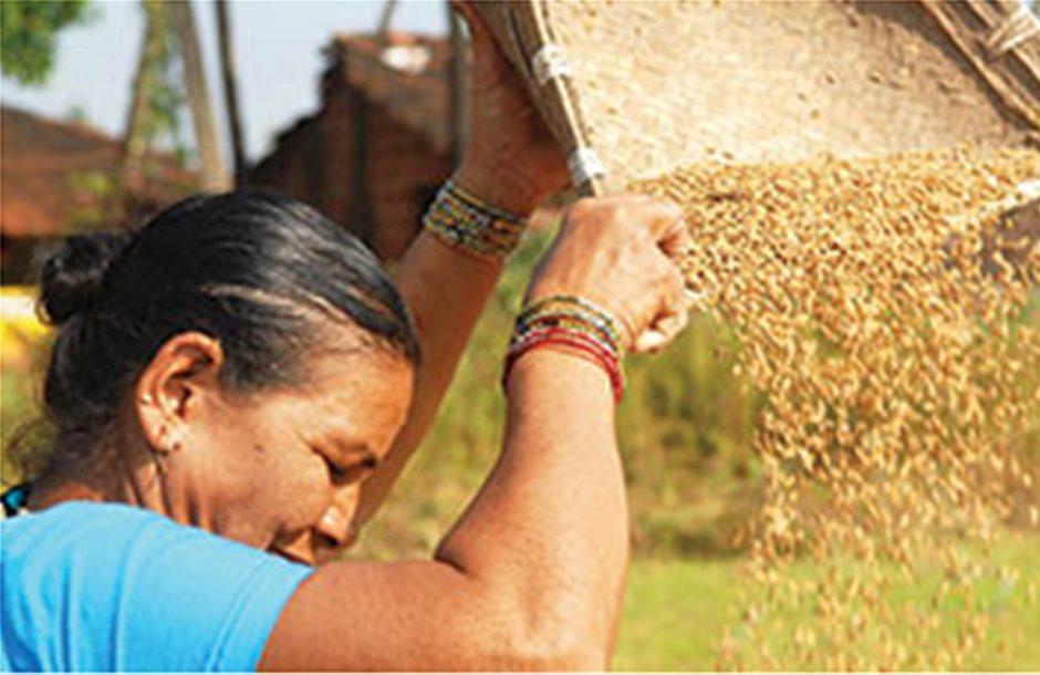 Οι επενδύσεις στη γεωργία μειώνουν τη φτώχεια
