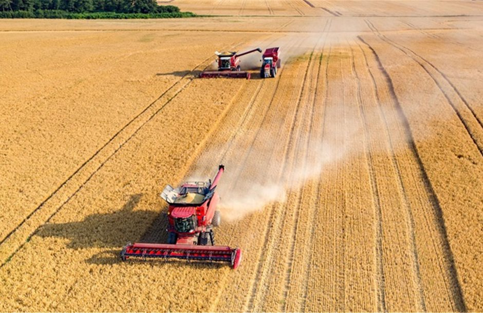 harvesting_wheat_combines_aerial_view_308337155_1200