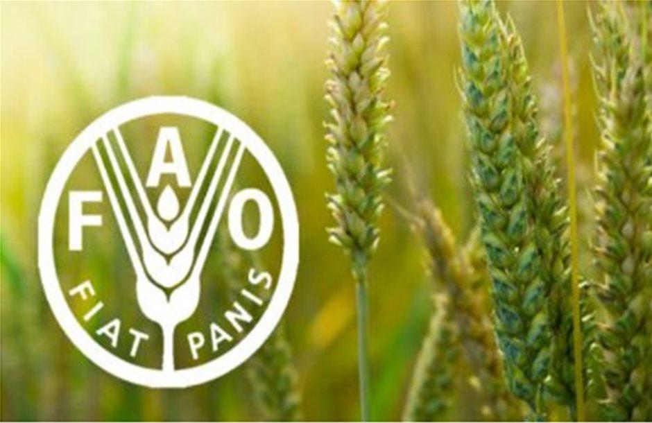 Στις 10/7 η νέα έκθεση FAO για τις επενδύσεις στη γεωργία