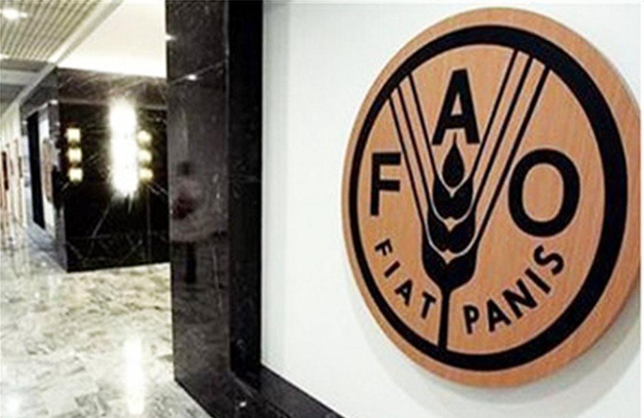 Τα φυτικά έλαια στήριξαν το δείκτη τροφίμων του FAO
