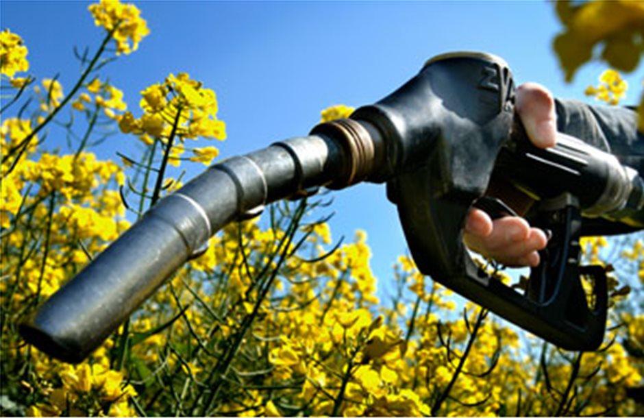 Λέει ναι στα βιοκαύσιμα το Ιράν
