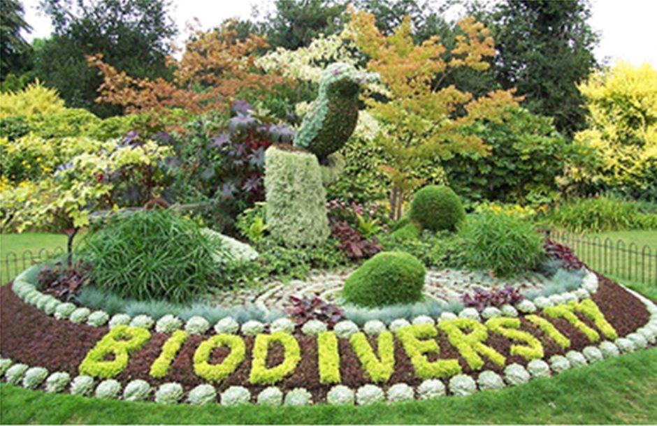 Η βιοποικιλότητα «ευθύνεται» για την ανάπτυξη του πολιτισμού