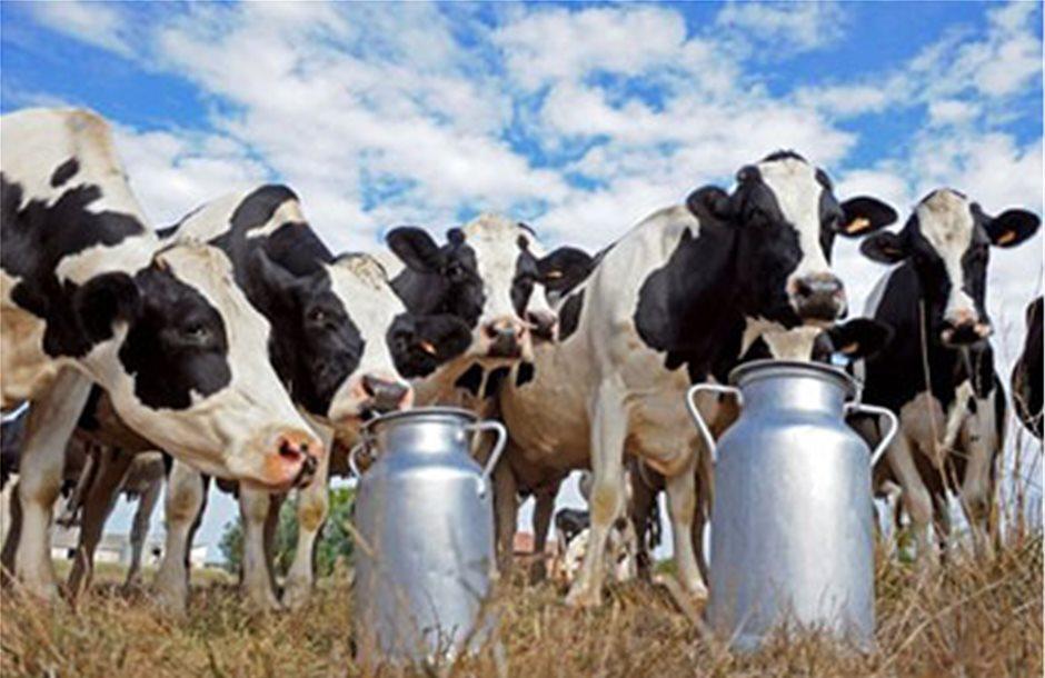 Καζάνι που βράζει η αγορά γάλακτος λόγω των χρεών των βιομηχανιών