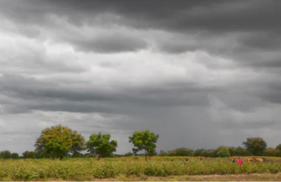 raincrop
