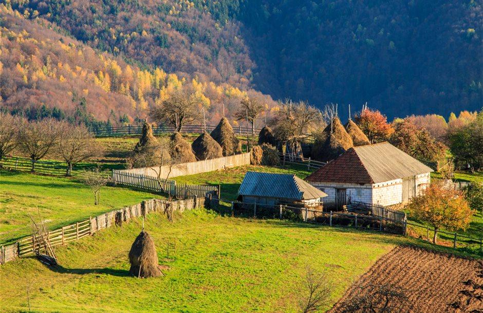 romanian_farm