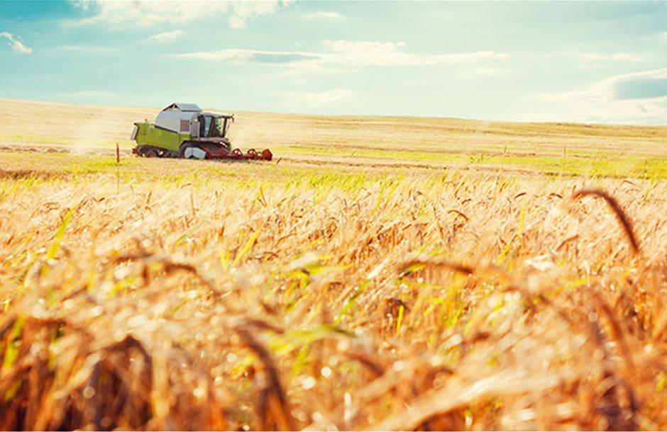 tas-medium-agriculture-master-plan-660x396