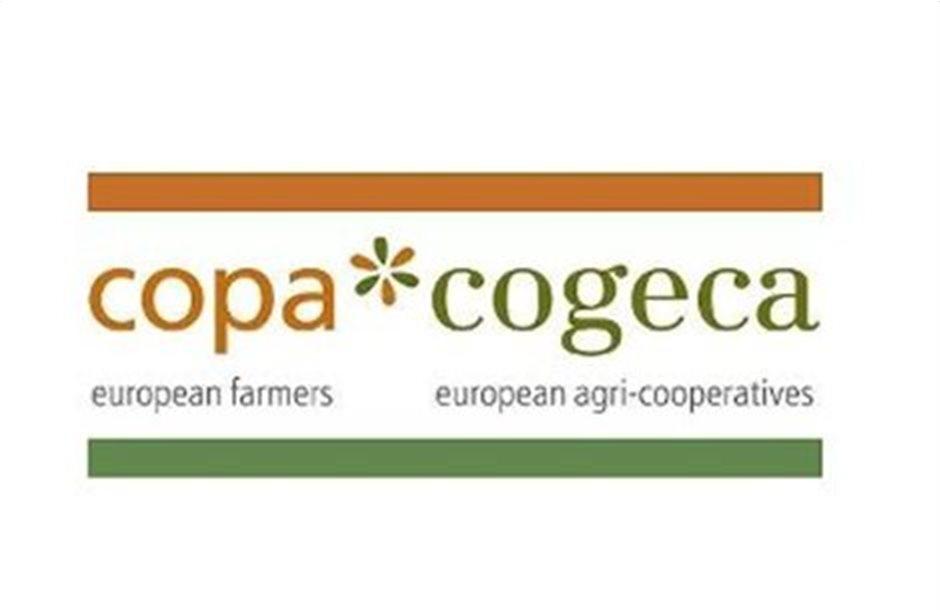 Copa Cogeca: Εθελοντική η αναγραφή συστατικών οίνων