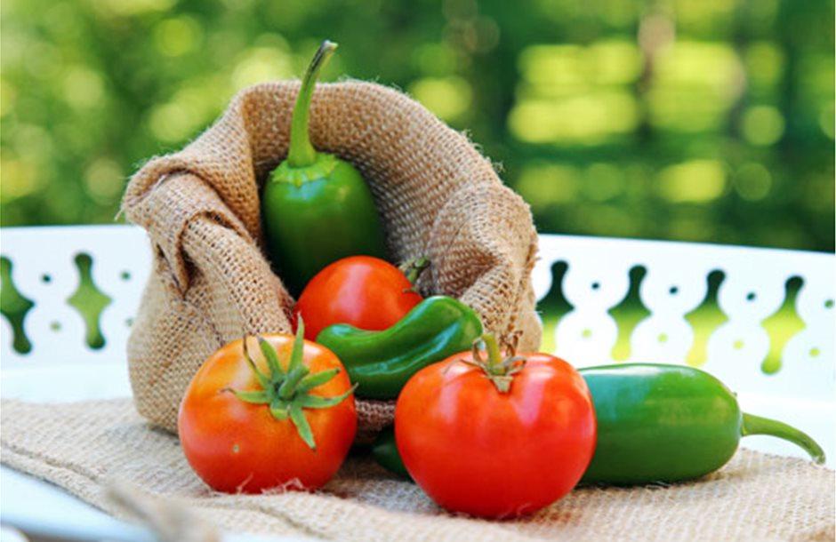 tomato-pepper-SS_472777312-560X400