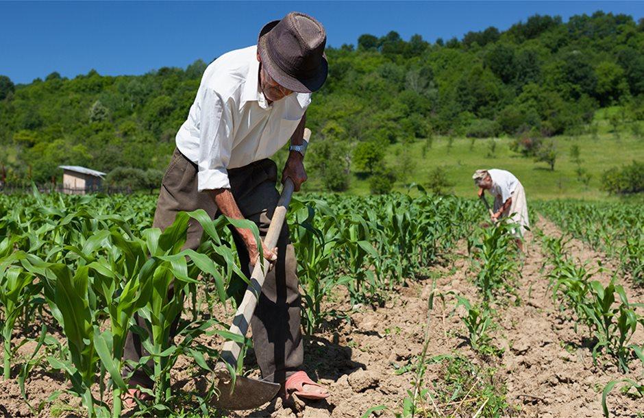 trattore-agricoltura-campagna-contadino-natura