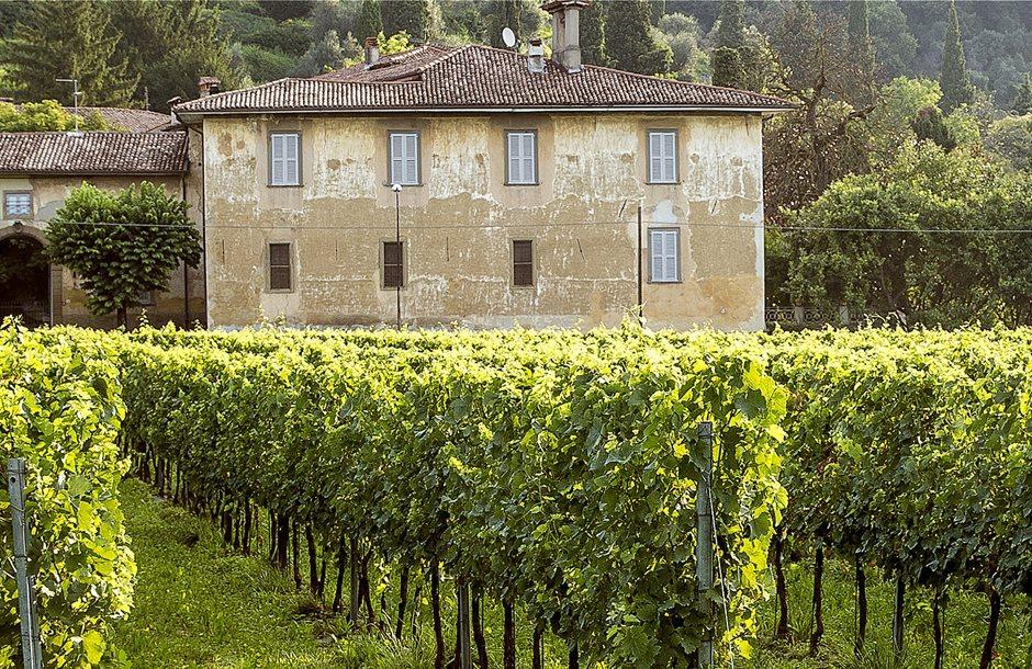 wineitaly