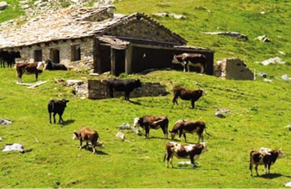 Σε ζώνες ανάπτυξης πατάει η αγροτική παραγωγή