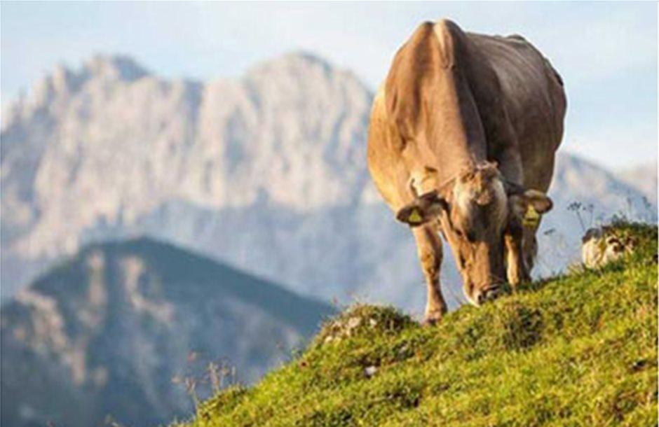 Η εξισωτική για ορεινούς αυξάνεται στα 12,5 ευρώ
