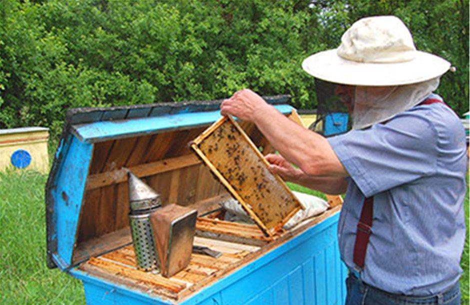 Νέα ευρωπαϊκή νομοθεσία για την προστασία της μελισσοκομίας